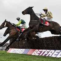 Boston Bob (nearside)