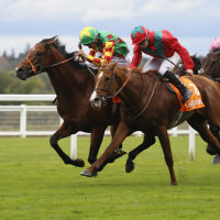 Danehill Kodiac (left) gets the better of Waldgeist to land the Cumberland Lodge Stakes at Ascot