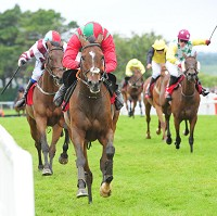Dollar And Dream is another Galway winner for Tony Martin