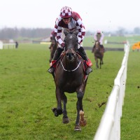 Diamond Cauchois cruises across the line in the Boyne Hurdle