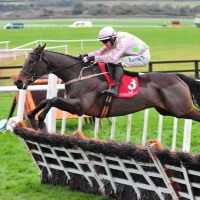Bookmakers want Getabird to get beat in the Supreme