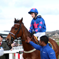 Cue Card after pulling up in the Ryanair