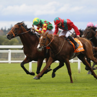Danehill Kodiac(left) gets the better of Waldgeist to win the Cumberland Lodge Stakes at Ascot