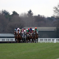 Ascot action