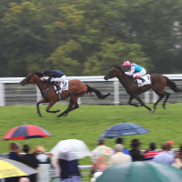 Rhododendron ridden by jockey Ryan Moore (left) coming home to win the Dove 100 Colours EBF British Stallion Studs Maiden Fillies' Stakes at Goodwood