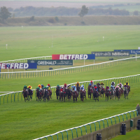 Newmarket action