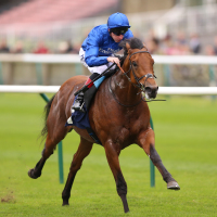 Old Persian bounds clear to score at Newmarket
