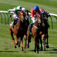 Maybride strikes at Newmarket