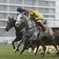 Politologue (right) does battle with Altior at Newbury