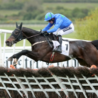 Asthuria ridden by Ruby Walsh jumps the last to win the Alanna Homes Mares Novice Hurdle during day three of the Punchestown Festival
