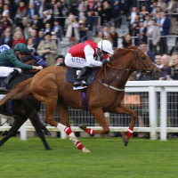 Just Glamorous wins at Ascot