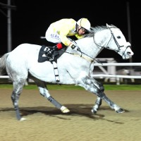 Captain Joy does it again at Dundalk