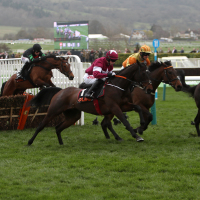 Apple's Jade (maroon and white) on her way to winning last year's Mares' Hurdle