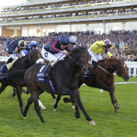 The Tin Man wins on Champions Day