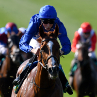 Masar is very impressive in the Craven