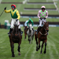 Sizing John winning last year's Gold Cup
