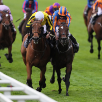 Order Of St George (right) is pipped by Big Orange at Royal Ascot
