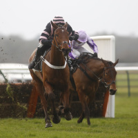 Mr Whipped ridden by Nico de Boinville wins the Ballymore Leamington Novices' Hurdle at Warwick