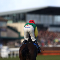 Vision Des Flos before his Exeter win