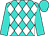 Turquoise, white diamonds, turquoise sleeves and cap
