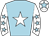 Light blue, white star, white sleeves, light blue stars, white cap, light blue star